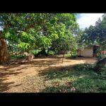 22020-12-free-day-mangold-resort-15